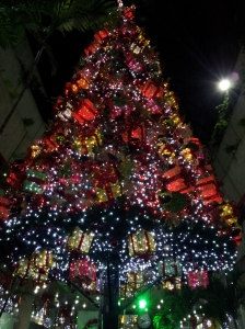 Christmas Tree in the Mall, First Week of November