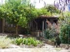 Village of Lizardo
