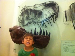 T-Rex exhibit