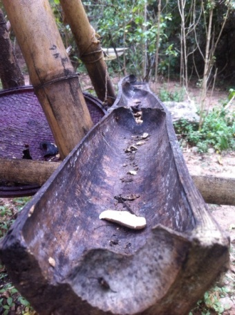 Bamboo gutter.