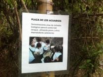 Bello Monte Adventure19